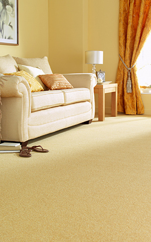 Carpet - Shaw Carpets in a Variety of Colors and Textur